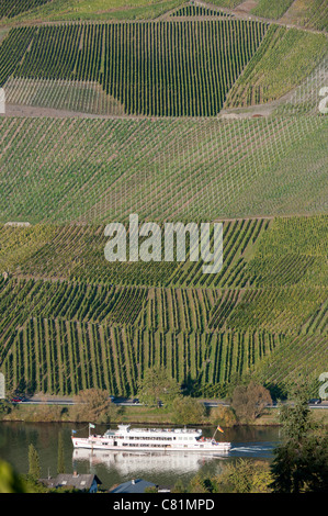 Vineyards on hillside beside Mosel River in Rhineland-Palatinate in Germany - Stock Photo