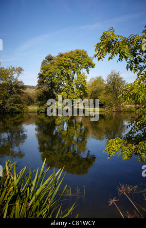A tree and its reflection in the water of the River Thames, near to Pangbourne, reading, Berkshire. - Stock Photo