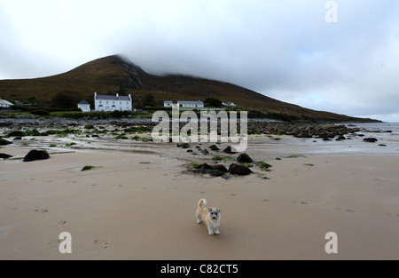 The Beach at Dugort on Achill Island in County Mayo called Golden Strand - Stock Photo
