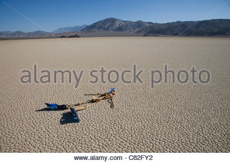 USA, California, Death Valley, skeleton with flippers on cracked - Stock Photo