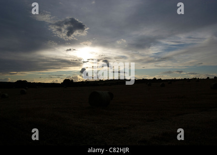 Hay bales in a field in front of the setting sun - Stock Photo
