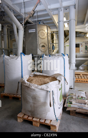 Production of wood pellets. A type of wood fuel. Sawdust is manufactured to pellets. Used in boilers of central - Stock Photo