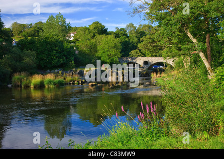 River Teifi Cenarth Carmarthenshire Wales - Stock Photo