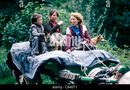 An Irish  'Traveller ' family with their dogs on a horse drawn cart in Ireland - Stock Photo