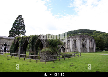The Monastic remains of the Chapter House at Margam Park near the Orangery. - Stock Photo