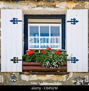 Sash window in a Cornish cottage with artificial wooden shutters and window box full of colourful flowers - Stock Photo