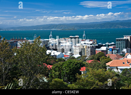 Panoramic View of Wellington City From Botanic Gardens North Island New Zealand NZ - Stock Photo