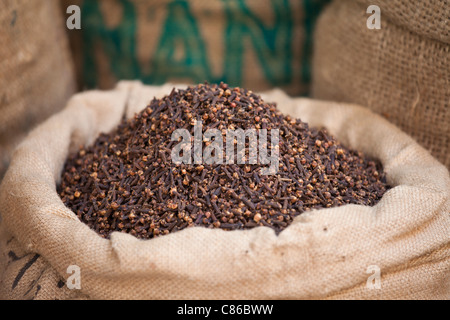 Sacks of dried cloves at Khari Baoli Spice and Dried Foods Market in Old Delhi, India - Stock Photo