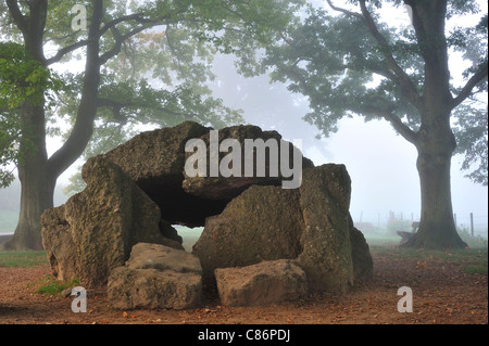 The Megalithic Grand Dolmen de Wéris and menhir in the mist, Belgian Ardennes, Luxembourg, Belgium - Stock Photo