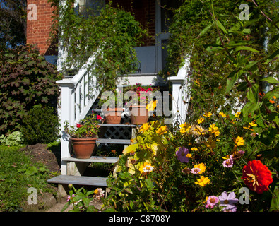 Flowering garden surrounds the white painted wooden stairs leading to front door of house - Stock Photo