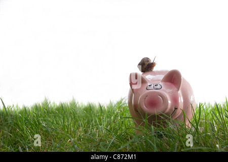 Euro coins falling into a pink piggy bank in a green field - Stock Photo