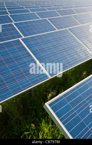 Germany, Baden-Wurttemberg, Winnenden, View of large number of solar panels at solar power plant field