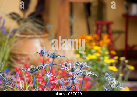 'Painting with Plants' Back to Back Garden, 2011 RHS Flower Show Tatton Park - Stock Photo