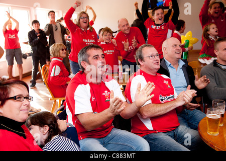 Aberystwyth Rugby club, Wales UK. 15 Oct 2011. Welsh rugby fans watch the Rugby World cup semi final match between - Stock Photo