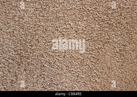 Detail of soft wool carpet, detailed texture background. - Stock Photo