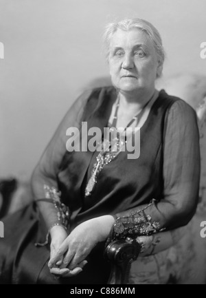 a biography of jane addams the social reformer The true legacy of social reformer, jane addams, is often overlooked today, but a century ago she was one of the nation's most radical progressives.