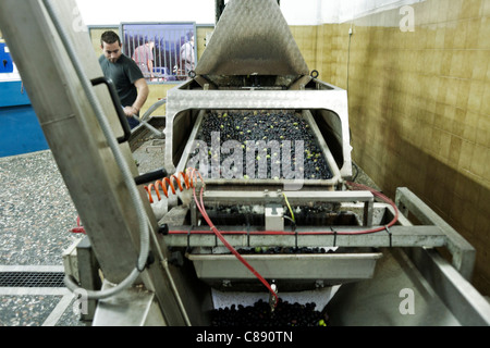 Olive mill in operation - Stock Photo