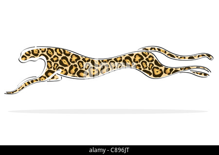 illustration of isolated background with leopard image - Stock Photo