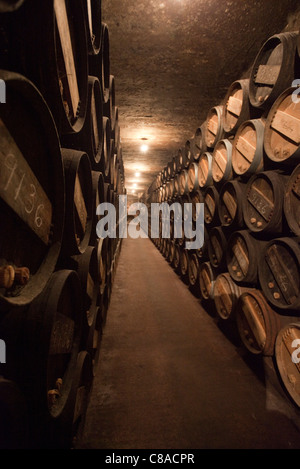 Lopez de Heredia Vina Tondonia Bodega  cellars with oak barrels, in Haro La Rioja Spain 110563_Spain - Stock Photo