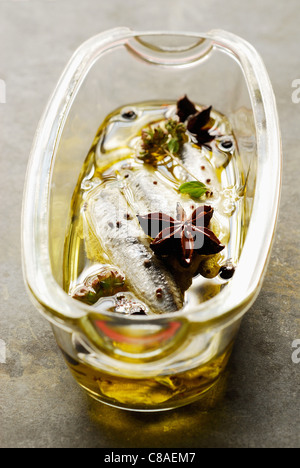 Anise oil Stock Photo, Royalty Free Image: 122206677 - Alamy
