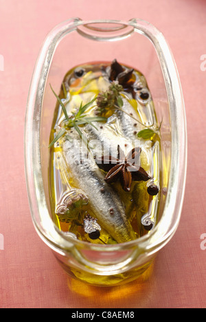 Fresh anchovies marinated with star anise - Stock Photo