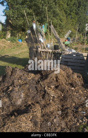 manure on the allotment in october - Stock Photo