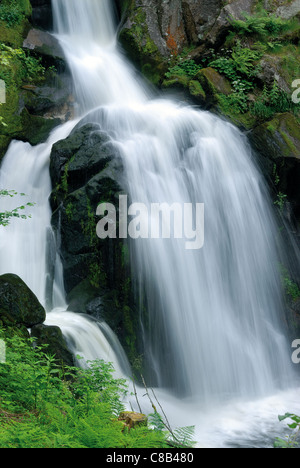 Germany, Black Forest:  Waterfalls of Triberg - Stock Photo
