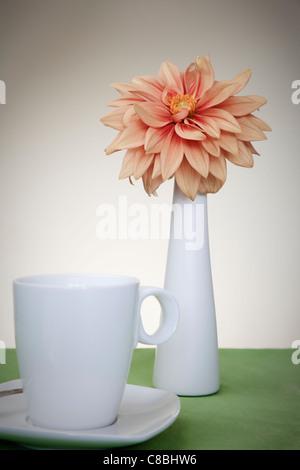 Orange Dahlia in white Vase with Coffee Cup - Stock Photo