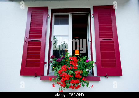 Balcon decora bright red trailing geraniums in window boxes in Champery, Switzerland, and seen in chalets in the - Stock Photo