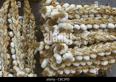 Garlic on sale at the street market in Sulmona, Italy. - Stock Photo