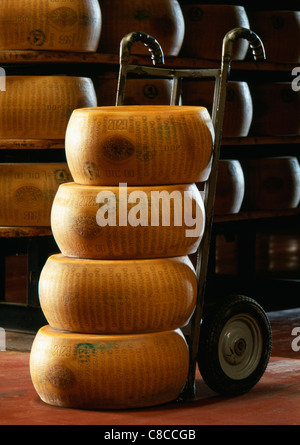Pile of whole parmesan cheeses - Stock Photo