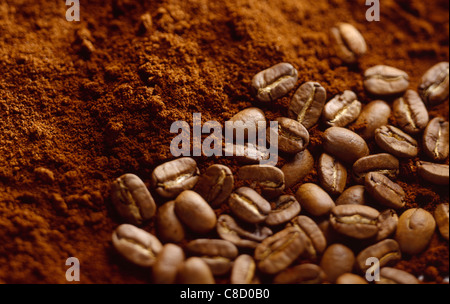 coffee beans and coffee powder - Stock Photo