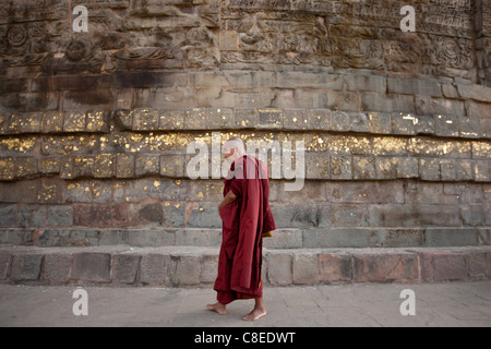 Buddhist monk praying as he walks around Dhamakh Stupa at Sarnath ruins near Varanasi, Benares, Northern India - Stock Photo