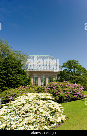 The Palm House surrounded by rhododendrons and hydrangeas at The Royal Botanic Garden, Edinburgh, Scotland, United - Stock Photo