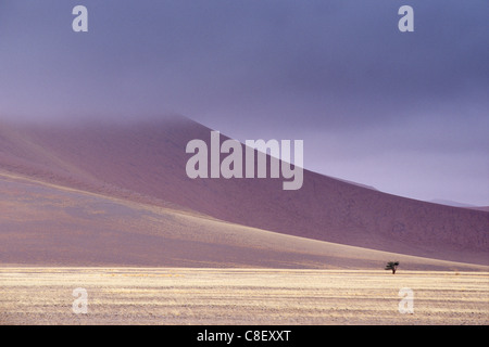 Early morning mist on red sand dunes which are up to 300m high, Sossusvlei valley, Namib-Naukluft Park, Namibia - Stock Photo
