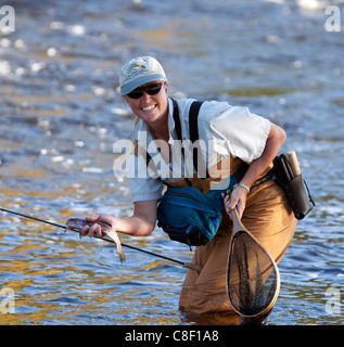A woman female fly-fishing with a freshly caught rainbow trout in her hand. - Stock Photo