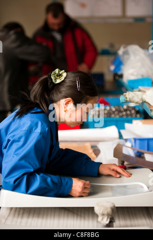 Worker, mobile satellite dish technological industry, Hebei, Province of Hebei, China - Stock Photo