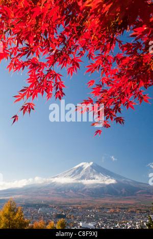 Japan, November, Asia, mountain Fuji, Fuji, maple, red, Japanese, maple, Momiji, snow, scenery - Stock Photo