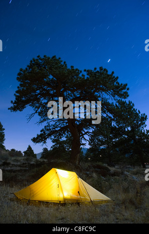 Tent illuminated under the night sky, Rocky Mountain National Park, Colorado, United States of America - Stock Photo
