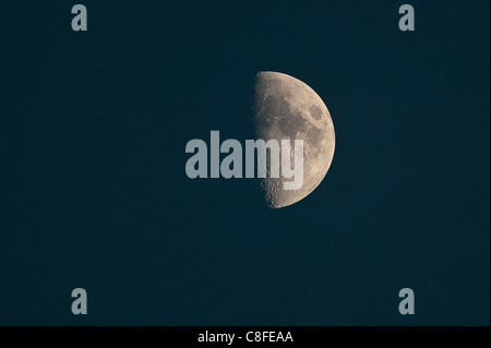 Half moon, Crescent, sky, heavenly body, moon, night, crater, Trabant - Stock Photo