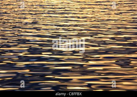 Evening, evening light, Cairngorms, detail, graphical, highlands, highland, Loch, Loch Morlich, Morlich, national - Stock Photo