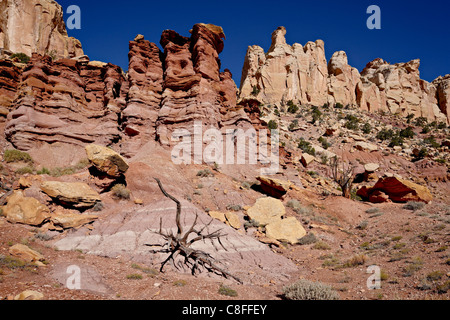 Rock formations and dead juniper, Grand Staircase-Escalante National Monument, Utah, United States of America - Stock Photo