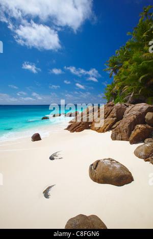 Deserted beach, La Digue, Seychelles, Indian Ocean - Stock Photo