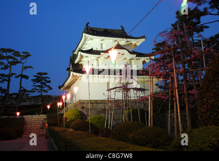 Night time view of the historic castle in japan - Stock Photo