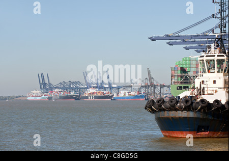 Container ships tied up at the Port of Felixstowe - Stock Photo