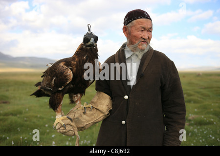 eagle hunter, bertutchy, Mongolia, Bayan Ulgii, Aimag, hunting, tradition, traditional, Kazakh, Western Mongolia, - Stock Photo