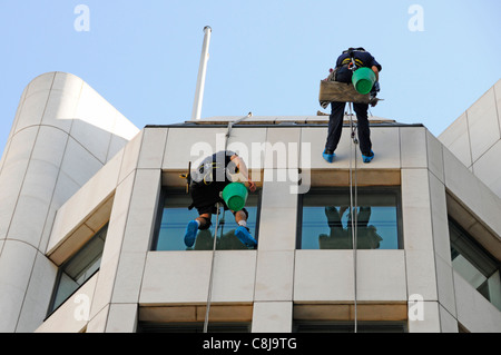 Window cleaner workers abseiling from roof level down face of office block reflections in glass London England UK - Stock Photo