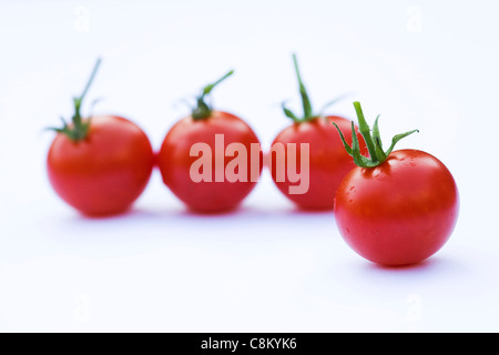 Lycopersicon esculentum. Small cherry tomatoes 'Gardeners Delight' on a white background. - Stock Photo
