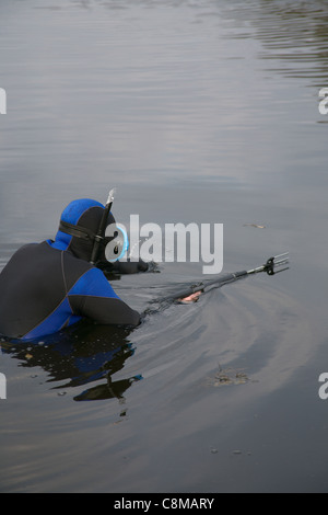 Underwater hunter is immersed in water to hunt . - Stock Photo