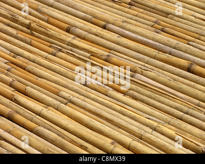 ... Roof Covered With Dry Reed   Stock Photo